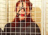 bondage cage